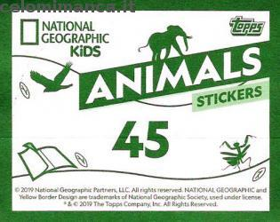 Animali Mania: Card Back n. 45 -